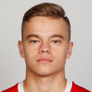 Dmitrii Rybchinskii
