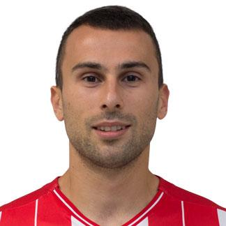Милан Гаич