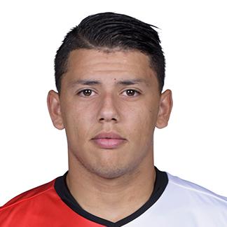 Gustavo Hamer