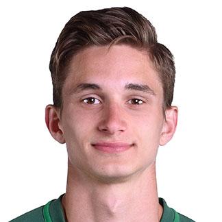 Dominik Pleštil