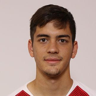 David Čolina