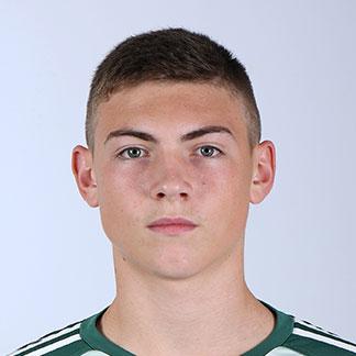 Nikola Čavlina