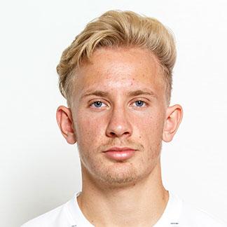 Niklas Streimelweger