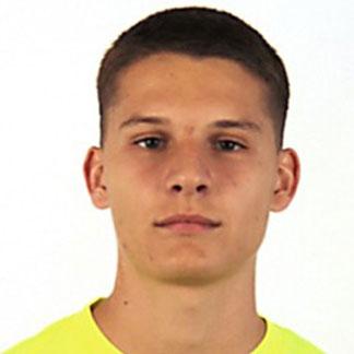 Roman Veselovský