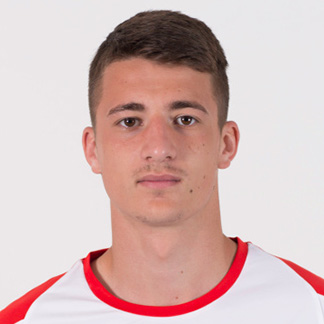 Danilo Mitrović