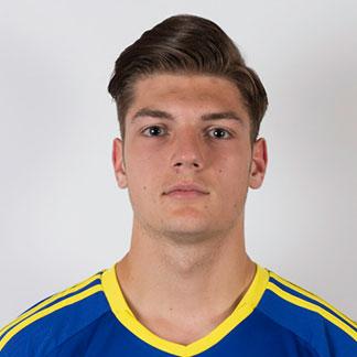 Farid Bačevac