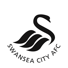 Swansea City Ladies