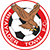 Rhayader FC