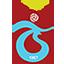 Trabzonspor AŞ