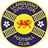 Llandudno Junction LFC