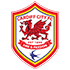 Cardiff City Futsal Club