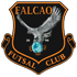 Falcao FC Stockholm