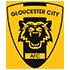 Gloucester Futsal Revolution