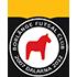 Borlänge FC