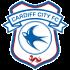 Cardiff (Flag)