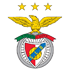Benfica (Flag)