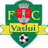 Vaslui (Flag)